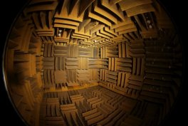 The Quietest Room of World